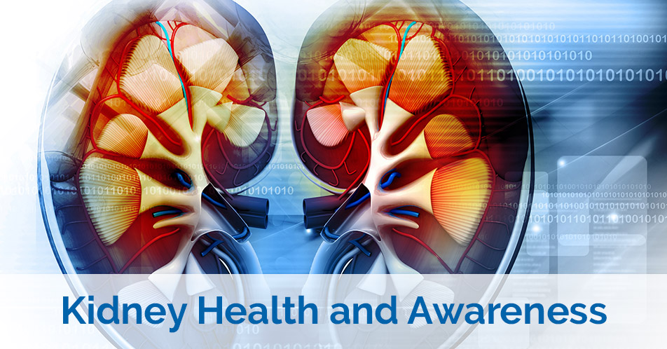 Kidney Health and Awareness